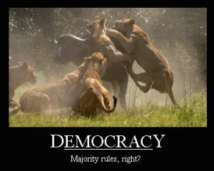 1democracy